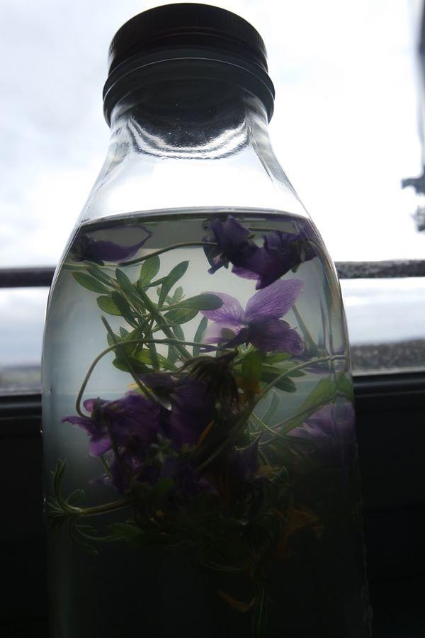 recette violette